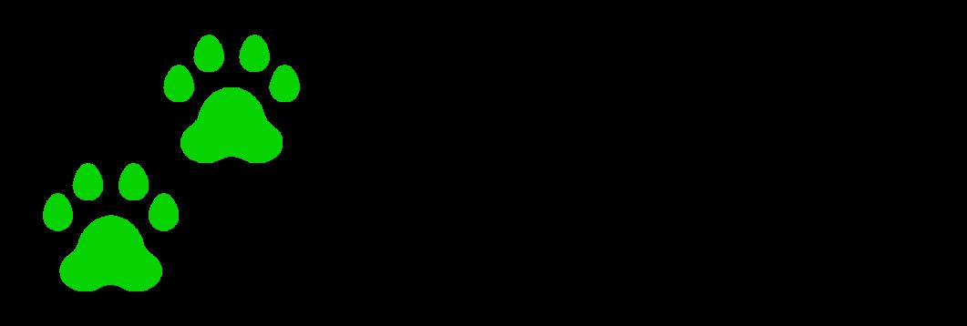ג'ונגל-ספארי